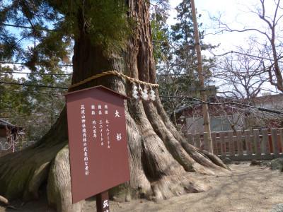 Tsukubas1450813