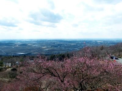 Tsukubasan1450789